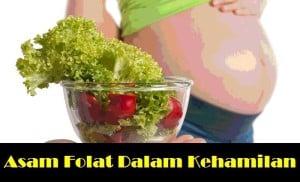 Asam Folat untuk ibu hamil 4
