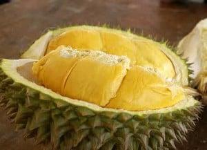 Ibu hamil makan durian