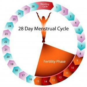 menopouse adalah siklus haid berhenti
