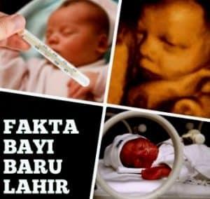 denyut jantung normal bayi baru lahir