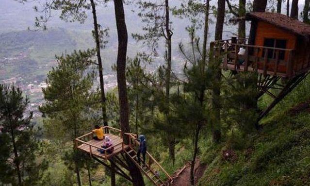 omah kayu di bukit malang lokasi omah kayu di bukit malang