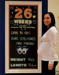 hamil 26 minggu