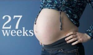 hamil 27 minggu bentuk perut ibu hamil 27 minggu