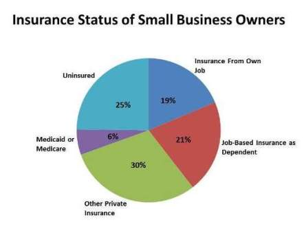 Health insurance for small business owner | HamilPlus.Com 2021