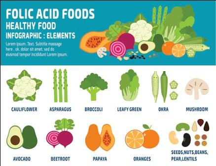 Folic Acid Folic Acid Folic Acid