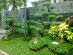 taman minimalis depan rumah 16 | HamilPlus.Com 2021