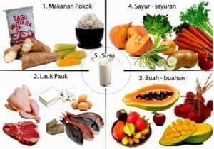 Makanan 4 sehat 5 sempurna contoh gambar