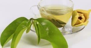 efek samping daun sirsak dampak buruk sirsak efek samping daun sirsak