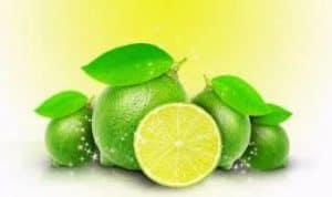 efek samping jeruk nipis efek samping jeruk nipis efek samping jeruk nipis efek samping jeruk nipis