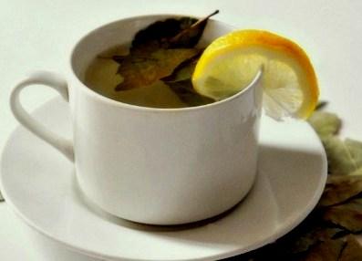 efek samping minum rebusan daun salam