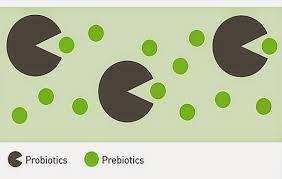 Bolehkah Probiotik bagi Ibu Hamil