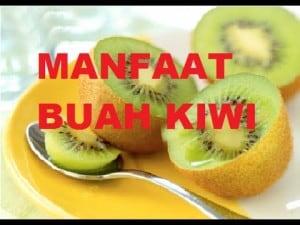 Khasiat Buah Kiwi untuk Ibu Hamil