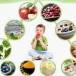 Jenis Makanan untuk Kecerdasan Anak agar Pintar Sejak Paud/TK
