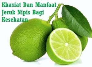 manfaat jeruk nipis khasiat jeruk nipis