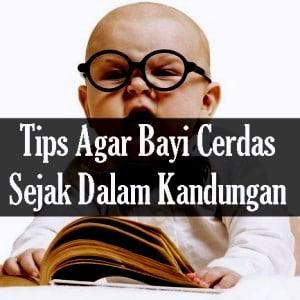 tips agar bayi cerdas sejak dini