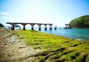 wisata pantai di malang - pantai jembatan panjang malang