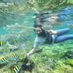 Pantai Nglambor, Cocok Untuk yang Suka Snorkling