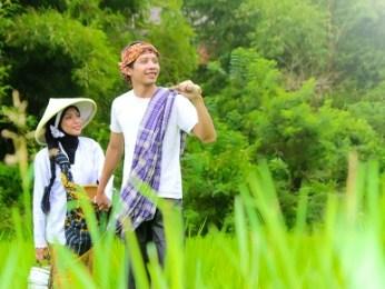 prewedding di sawah 2 | HamilPlus.Com 2021