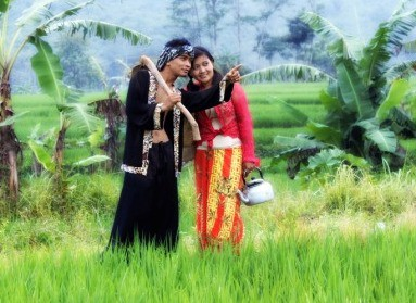prewedding di sawah simple | HamilPlus.Com 2021