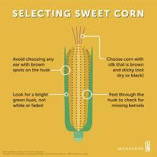 Corn Nutrition Facts Corn Nutrition Facts