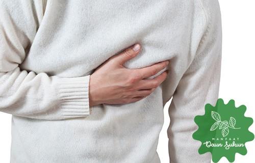 7 Manfaat Daun Sukun Untuk Kesehatan Tubuh