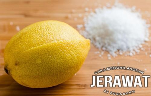 Scrub Gula dan Lemon cara menghilangkan jerawat di punggung dan dada
