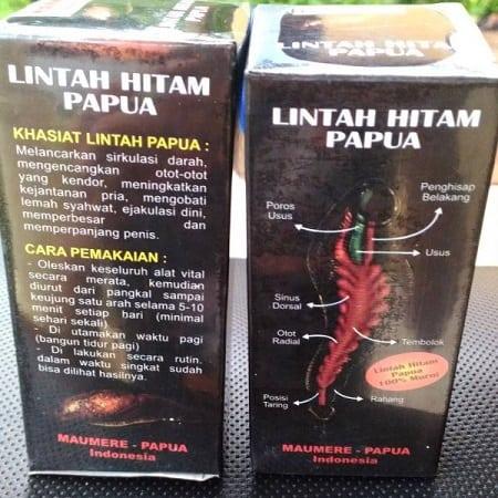 efek samping minyak lintah Papua, harga minyak lintah asli, tempat penjualan minyak lintah asli