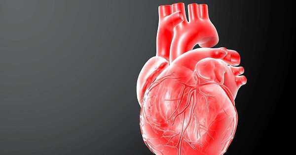 pantangan makanan jantung bengkak (esiko jantung bengkak, makanan untuk penderita jantung bengkak)