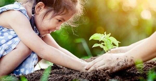 cara meningkatkan kecerdasan naturalis anak sejak dini