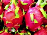 manfaat buah naga 3
